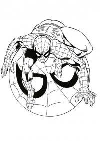 Человек паук на своей эмблеме Раскраски для мальчиков