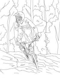 Велоспорт, горы, деревья Раскраски для мальчиков бесплатно