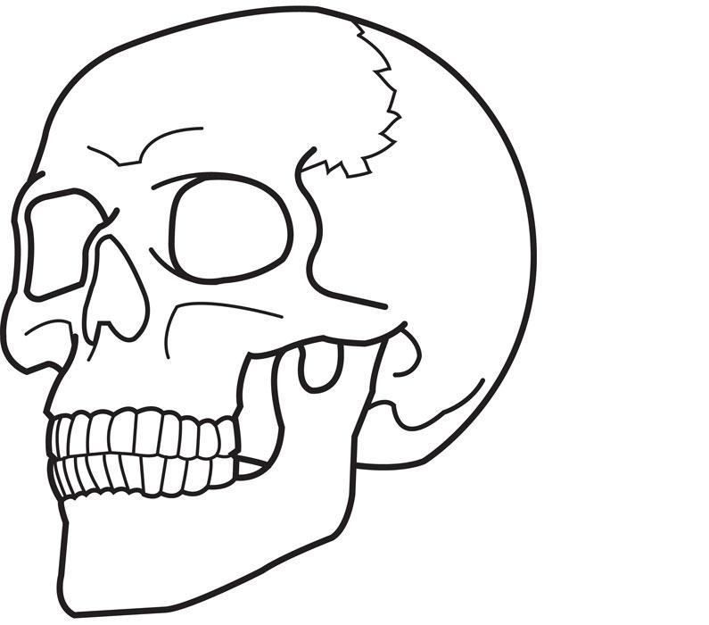 Человеческий череп Раскраски для детей мальчиков