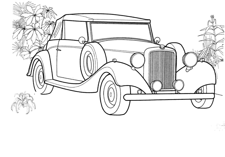Автомобиль, цветы Скачать раскраски для мальчиков