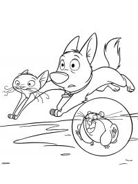 Кот, пес и хомяк бегут, хомяк  прозрачном шаре Раскраски для детей мальчиков
