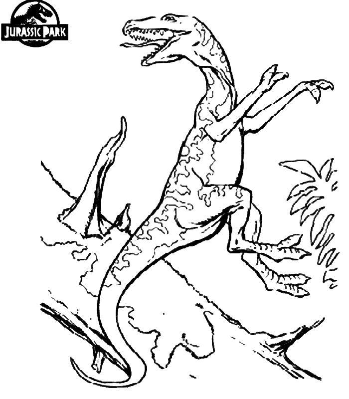 Динозавр в прыжке, парк юрского периода Раскраски для мальчиков бесплатно