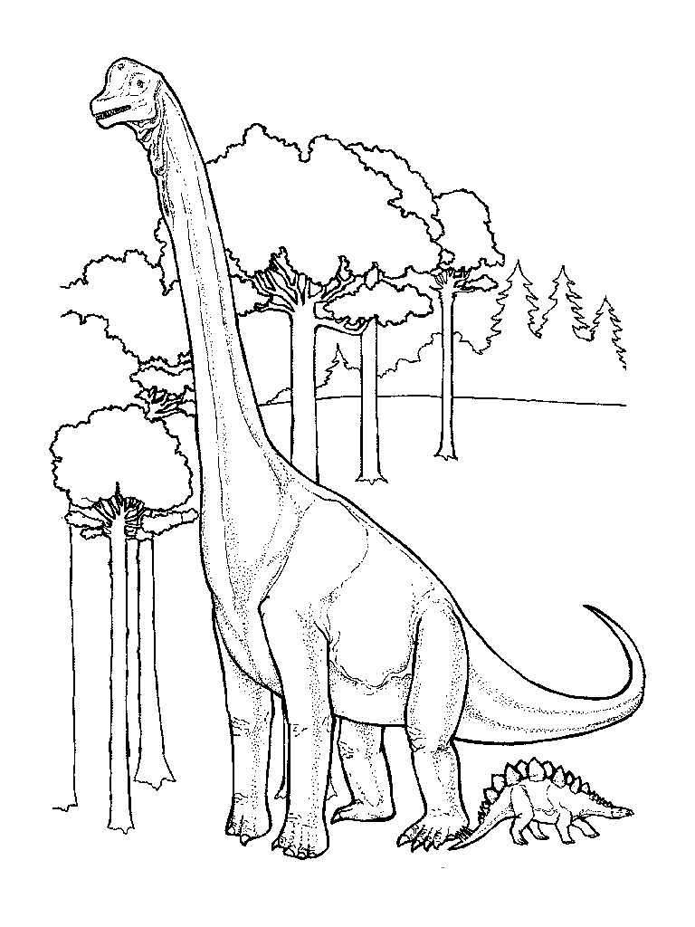 Бронтозавр выше деревьев Раскраски для мальчиков