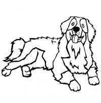Пушистая собака Скачать раскраски для мальчиков