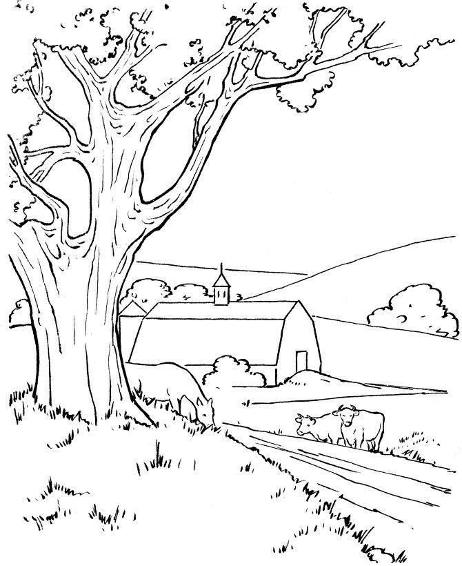 Горы, ферма, дерево, кусты, сарай, коровы Раскраски для детей мальчиков