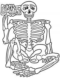 Скелет сидит Раскраски для мальчиков
