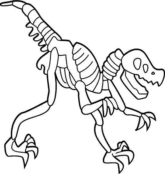 Скелет динозавра Раскраски для мальчиков бесплатно