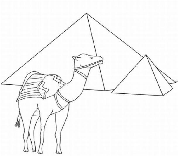Верблюд возле пирамид Раскраски для мальчиков бесплатно
