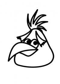 Angry birds злые птички, птичка с хохолком Раскраски для детей мальчиков