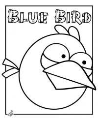 Angry birds злые птички, голубая птичка Раскраски для детей мальчиков