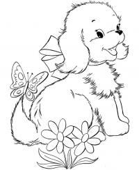 Щенок в бантике, бабочка на хвосте щенка, цветочки Раскраски для мальчиков