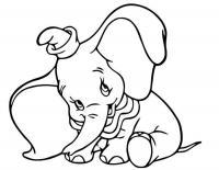Слоненок в шляпе Раскраски для мальчиков